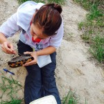Senior Elizabeth DelMain puts a transmitter on the back of a turtle. Delmain spent a summer in Michigan studying turtles as part of Team Turtle. (Photo courtesy of Time Lewis).