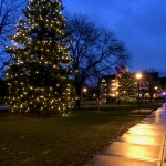 Dusk falls on the now-lit trees on Saint Thomas' lower quad. (Noah Brown/TommieMedia)