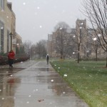 Few students made the trek across campus Friday. The snow began falling around 2 p.m. and picked up intensity throughout the afternoon. (Sophie Carson/ TommieMedia)