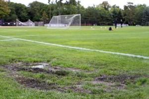 <p>Softball coach John Tschida and women's soccer captain Callan Faulkner both mentioned the easily-torn up grass as one reason for the plan to turf the soccer and softball fields. (Rita Kovtun/TommieMedia)</p>