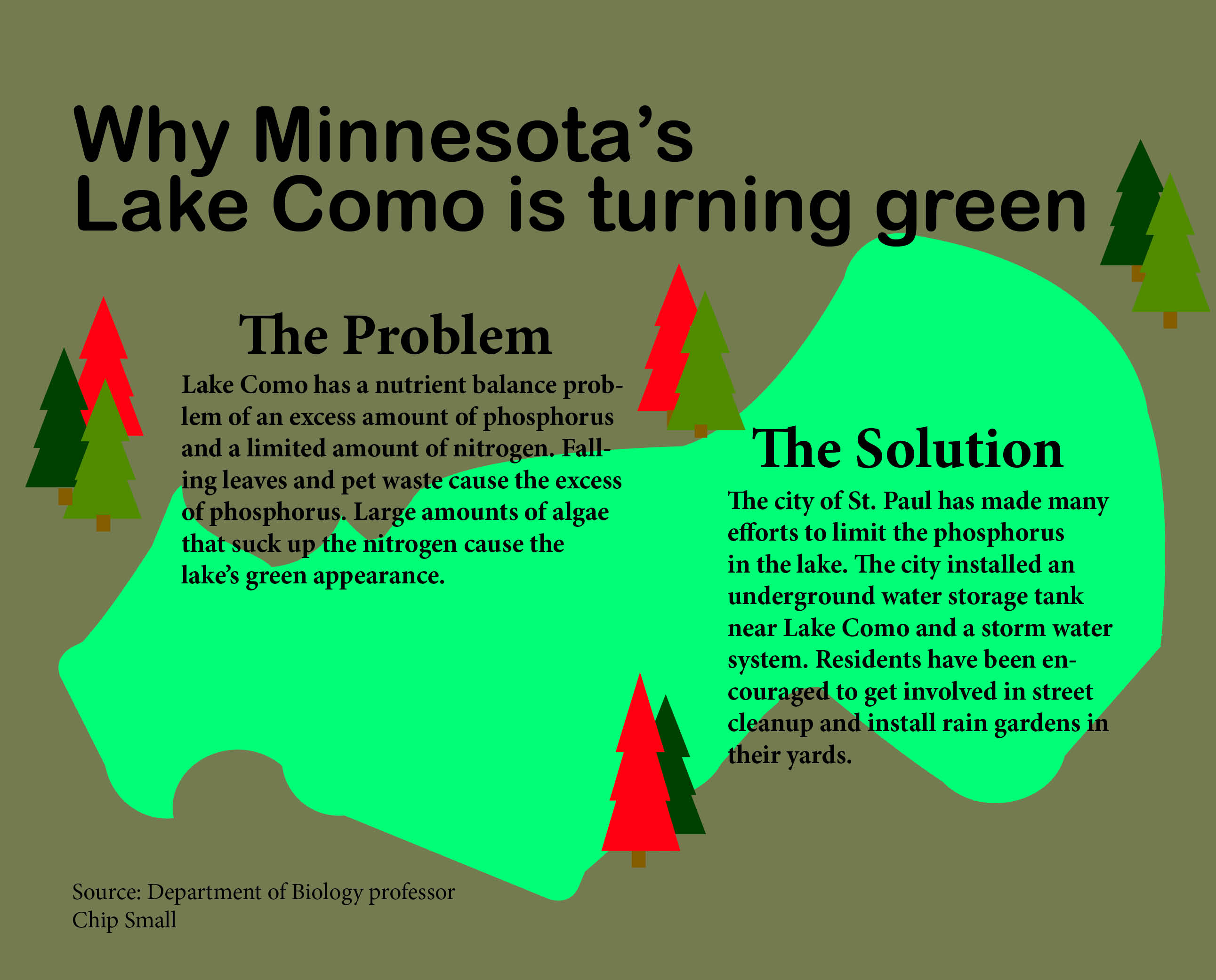 Infographic by designer Colleen Ormberg