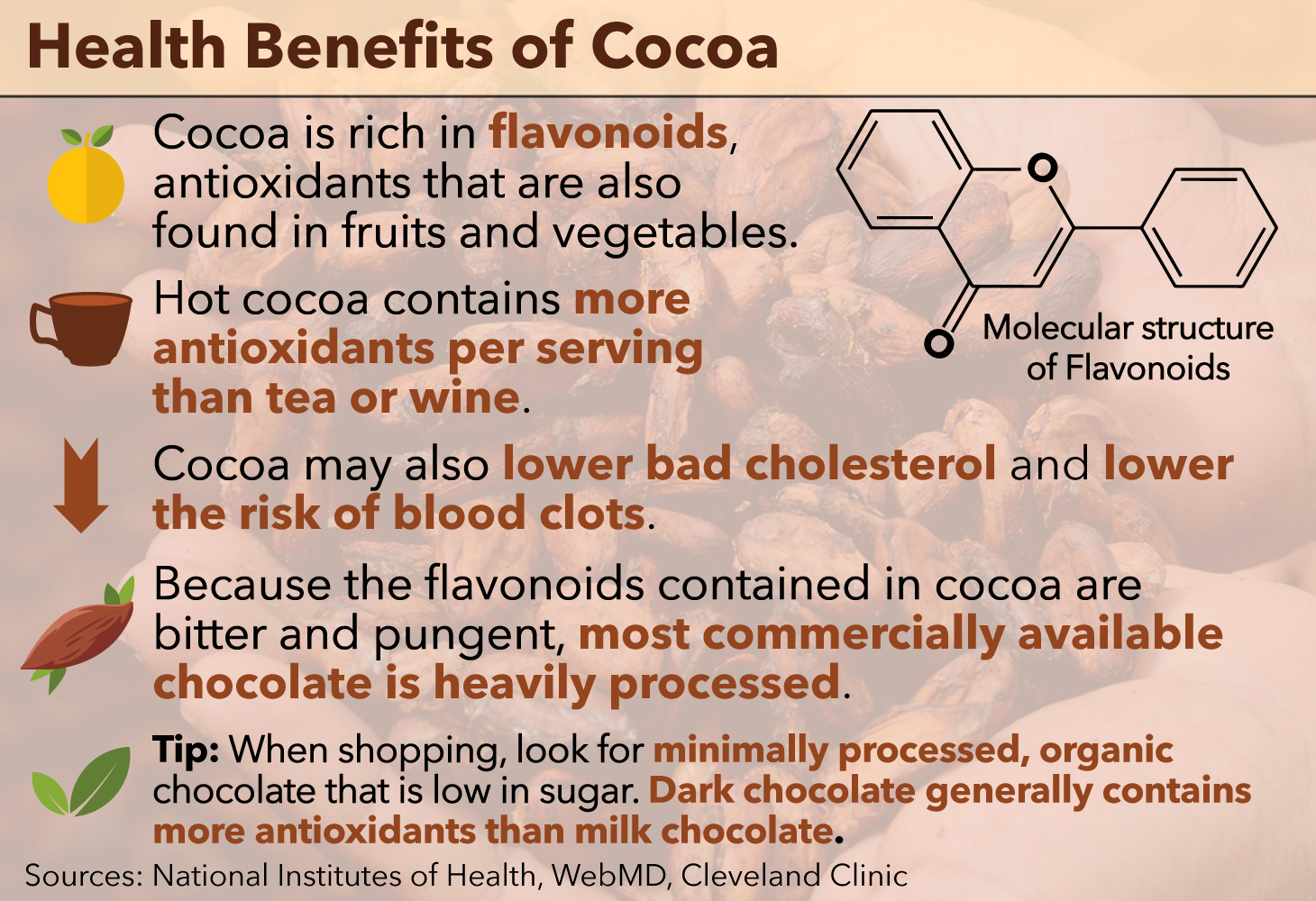 Cocoa: the benefits and harm of the drink 13