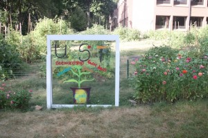 <p>The Community Garden's growing season is almost over. (Jessica Barton/TommieMedia)</p>