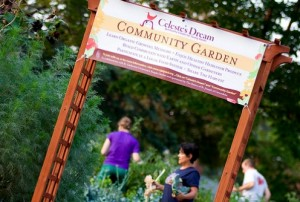 St. Catherine University, the Sisters of St. Joseph of Carondelet and Macalester College offer community gardens. St. Thomas may join that list come spring. (Aaron Hays/TommieMedia)